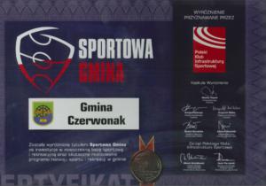 certyfikat wyróżnienia sportowa gmina 2012