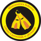 logo pletwy