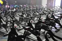 sprinc_cycling_1005